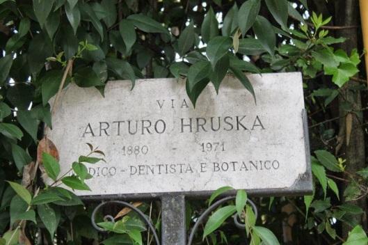 Image result for arturo hruska images