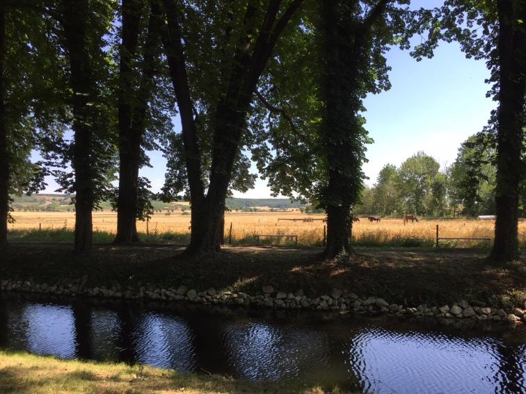 Blick aus dem Gutspark in die Landschaft